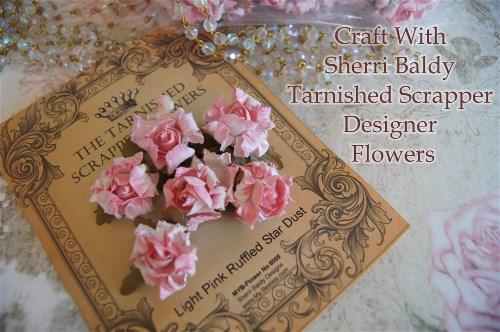 Pink Pink Pink Flowers-