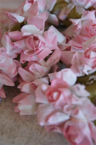 Pink Rose Garden Flowers-